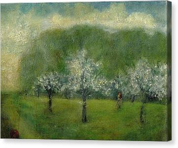 A Dream Of Apple Blossom Time Canvas Print