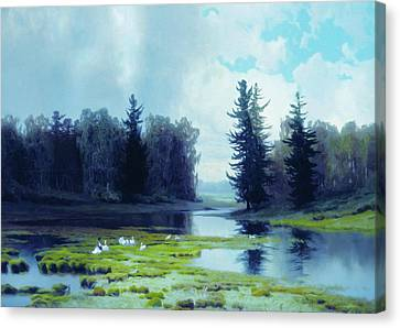 A Dreary Day At The Pond Canvas Print