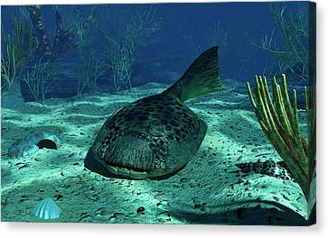 A Drepanaspis On The Bottom Canvas Print by Walter Myers
