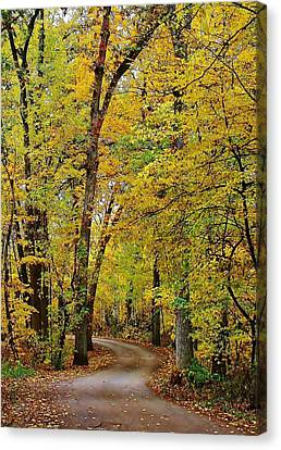 Lowden State Park Canvas Print - A Drive Through The Park by Bruce Bley