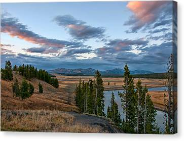 A Fall Evening In Hayden Valley Canvas Print by Steve Stuller
