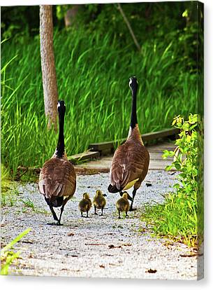 A Family Stroll Canvas Print by Edward Peterson