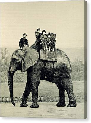 A Farewell Ride On Jumbo From The Illustrated London News Canvas Print by English School
