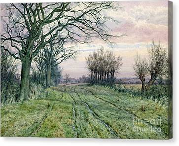 A Fenland Lane With Pollarded Willows Canvas Print by William Fraser Garden