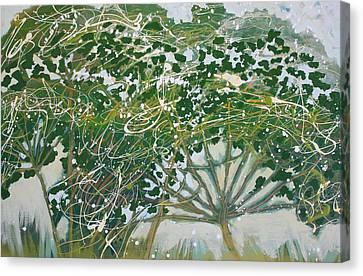 A Field Of Valerian Canvas Print by Jan Swaren