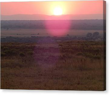 A Flare From South Africa Canvas Print by Patrick Murphy