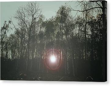 A Foggy Morning  Canvas Print by Martin Newman