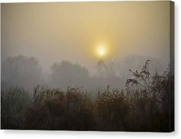 A Foggy Sunrise Canvas Print by Carolyn Marshall