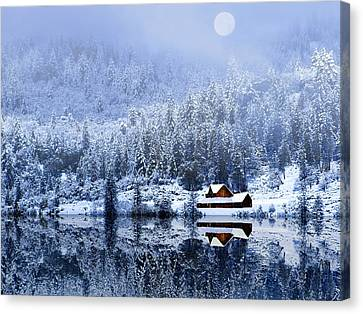 Canvas Print featuring the photograph A Foggy Winter Night by Diane Schuster