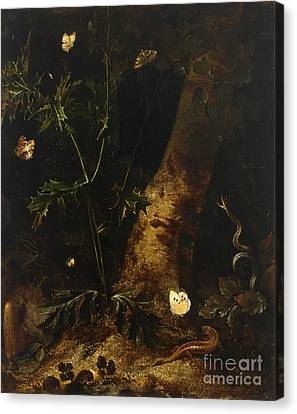 A Forest Floor  Still Life With A Salamander Canvas Print
