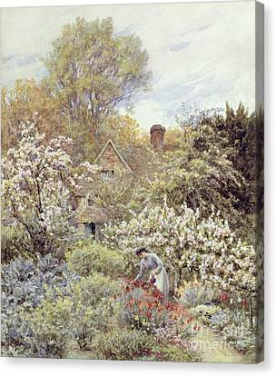 A Garden In Spring Canvas Print by Helen Allingham