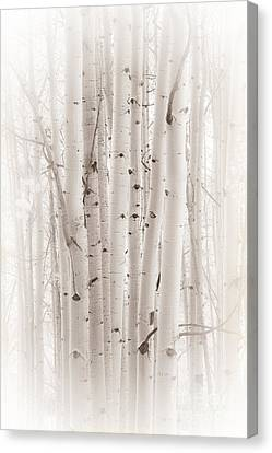 A Gathering Canvas Print by The Forests Edge Photography - Diane Sandoval