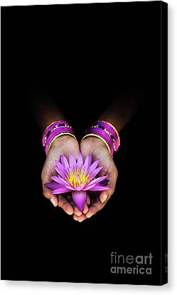 A Gift Canvas Print by Tim Gainey