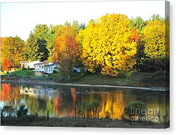 A Great Place For Geese Canvas Print