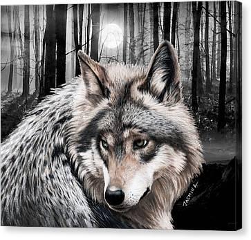 A Grey Wolf  Canvas Print by Jasmina Susak