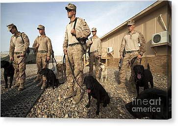 A Group Of Dog-handlers Conduct Canvas Print by Stocktrek Images
