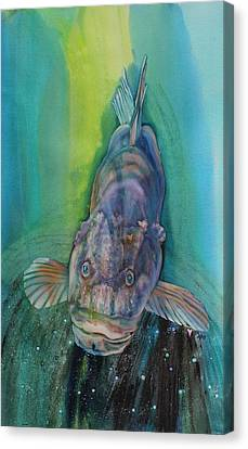 A Groupers Look Of Love Canvas Print by Teresa Grace Fourre