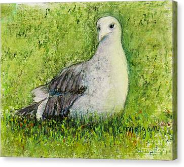 A Gull On The Grass Canvas Print by Laurie Morgan