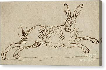 A Hare Running, With Ears Pricked  Canvas Print