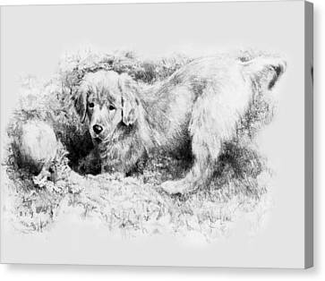 A Hiding Place Canvas Print by Rachel Christine Nowicki