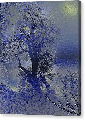 Canvas Print featuring the photograph A Hoar Frost Morning by Irma BACKELANT GALLERIES