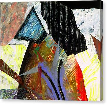 A House Divided Canvas Print by Sue Reed
