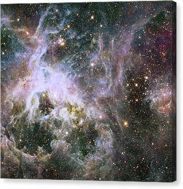 Canvas Print featuring the photograph A Hubble Infrared View Of The Tarantula Nebula by Nasa