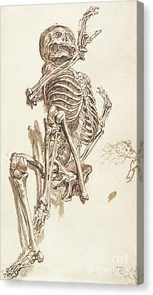 A Human Skeleton Canvas Print