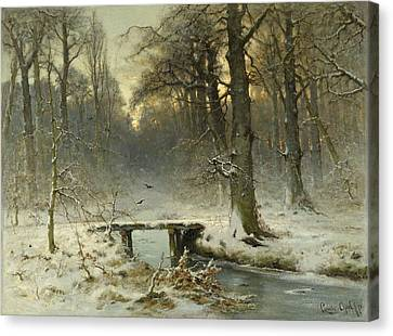A January Evening In The Woods Canvas Print