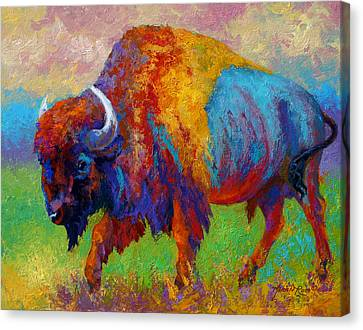 Bull Canvas Print - A Journey Still Unknown - Bison by Marion Rose