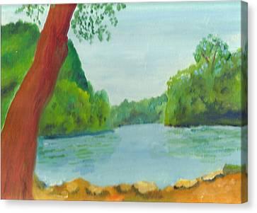 A June Day At Hidden Falls Canvas Print