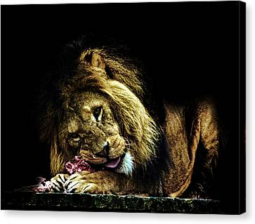 A King's Feast Canvas Print by Martin Newman
