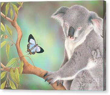 A Kiss For Koala Canvas Print by Karen Hull