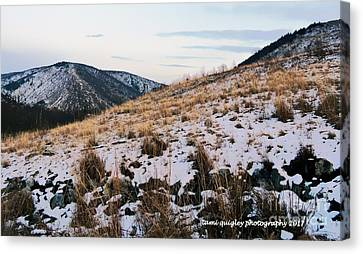 A Kittatiny Winter  Canvas Print by Tami Quigley