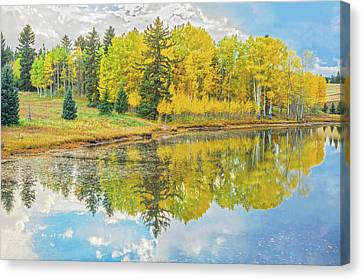 A Lakeside Willowwacks  Canvas Print