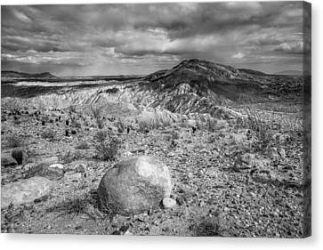 A Land Untamed - Black And White Canvas Print