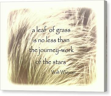 Canvas Print - A Leaf Of Grass Walt Whitman Quote by Ann Powell
