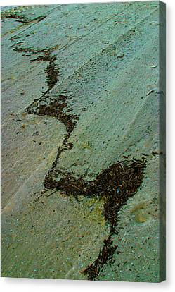 A  Line  In  The  Sand Canvas Print