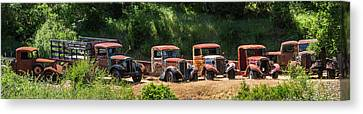 A Line Of Rust Canvas Print
