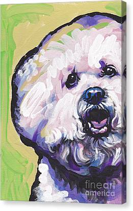 A Little Bichon Canvas Print