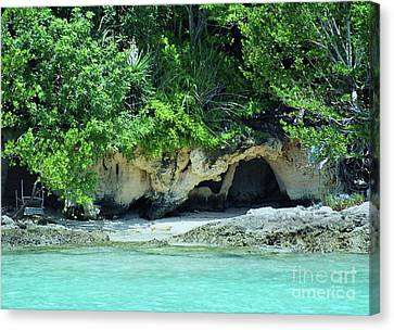 Counterpoint Canvas Print - A Little Cave In Bermuda by Marcus Dagan