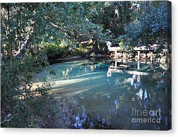 A Little Heaven On Earth Canvas Print