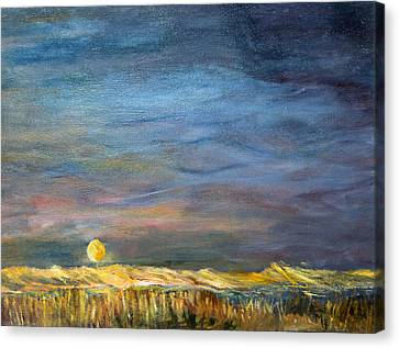 A Little Moon Magic Canvas Print by Michael Helfen