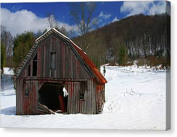 A Little Rust Canvas Print by Dale R Carlson