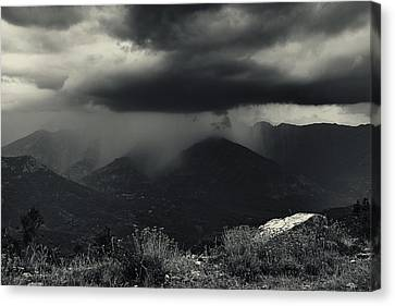 A Little Shower Canvas Print by Fabien Bravin