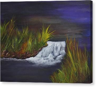A Little Wild Canvas Print