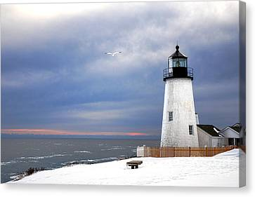 A Lonely Seagull Was Flying Over The Pemaquid Point Lighthouse Canvas Print