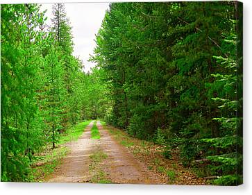 A Long Gravel Road Canvas Print by Jeff Swan