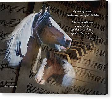 A Lovely Melody Canvas Print by Terry Kirkland Cook