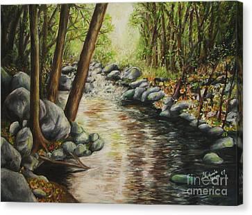 Magic Stream In Sedona Az Canvas Print by Stephanie  Skeem